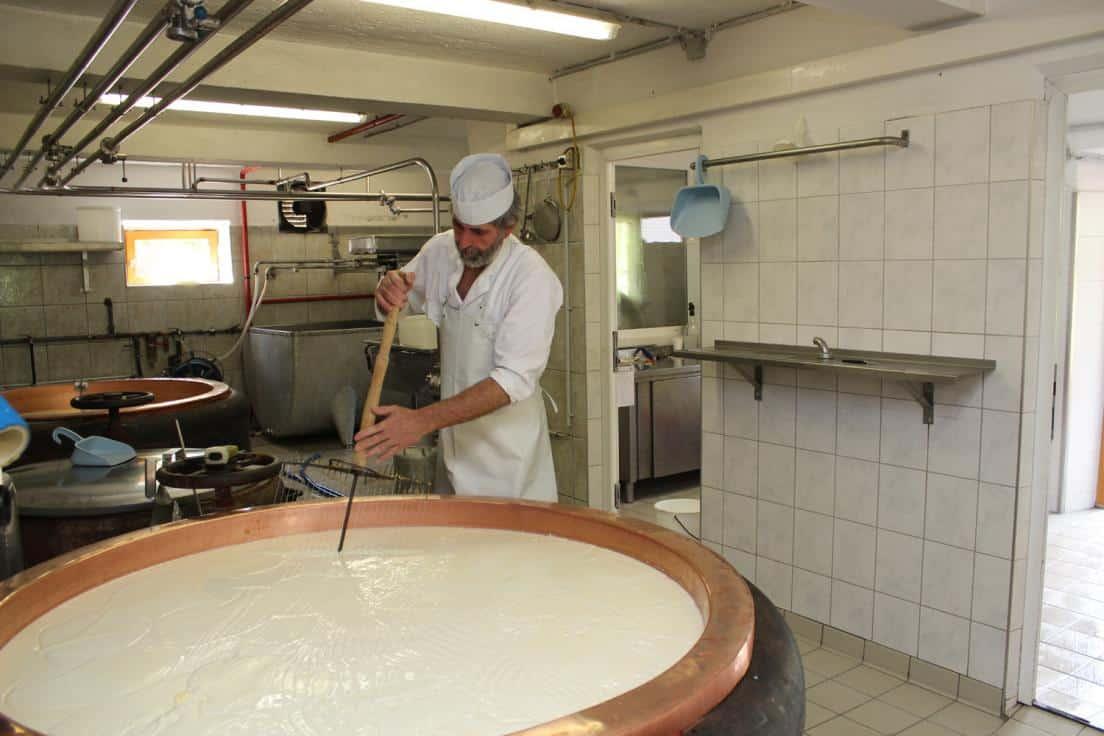 """Johann Schönauer schneidet die geronnene Milch. """"Wenn das nicht gemacht wird, wird der Käse schwammig,"""" sagt er."""