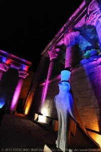 CTOUR vor Ort: Ägypten im Umbruch - Fotoimpressionen, Teil 1: Kontraste 11