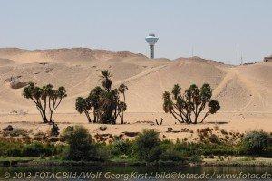 CTOUR vor Ort: Ägypten im Umbruch - Fotoimpressionen, Teil 2: Gesichter des Nil 15