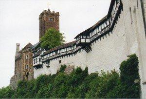 CTOUR vor Ort: Besuch im Urwald - mitten in Deutschland? 2