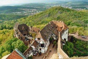CTOUR vor Ort: Besuch im Urwald - mitten in Deutschland? 3