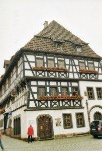 CTOUR vor Ort: Besuch im Urwald - mitten in Deutschland? 4