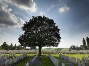 """""""Krieg und Trauma"""" - Soldatenfriedhof in langemark"""