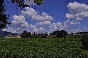 Landschaft der Franciacorta Foto: R. Keusch