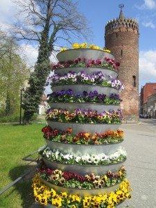 CTOUR vor Ort: Von Dom zu Dom – Blütenträume entlang der Havel laden ein 7