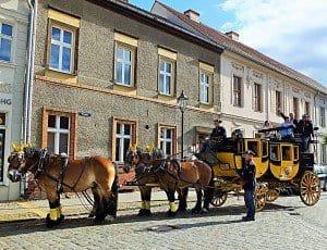 CTOUR-Medientreff on Tour: Mit der Postkutsche im Fläming – Titanen der Rennbahn laden ein 4