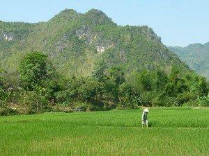 CTOUR ON TOUR: Vietnam - Zwischen Tradition und Moderne 14