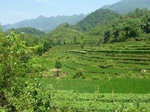 CTOUR ON TOUR: Vietnam - Zwischen Tradition und Moderne 15