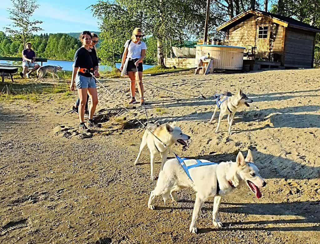 """Ein """"Husky Walk"""" gehört zu den unvergesslichen Outdoor-Erlebnissen in der Ferienanlage von Granö. Im Hintergrund das Sauna-Blockhaus mit Badezuber direkt am Fluss"""