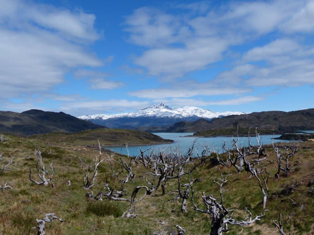 Torres del Paine im Süden Patagoniens