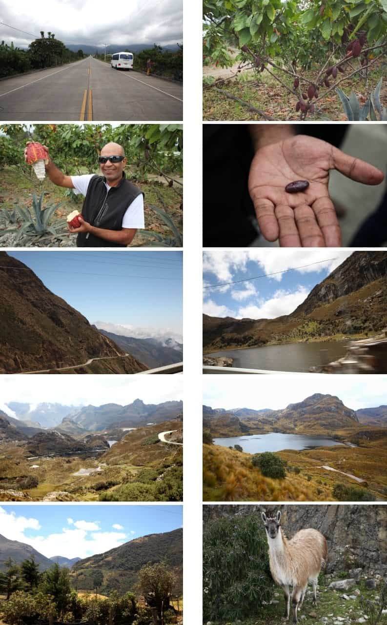 """Nationalpark """"El Cajas"""""""