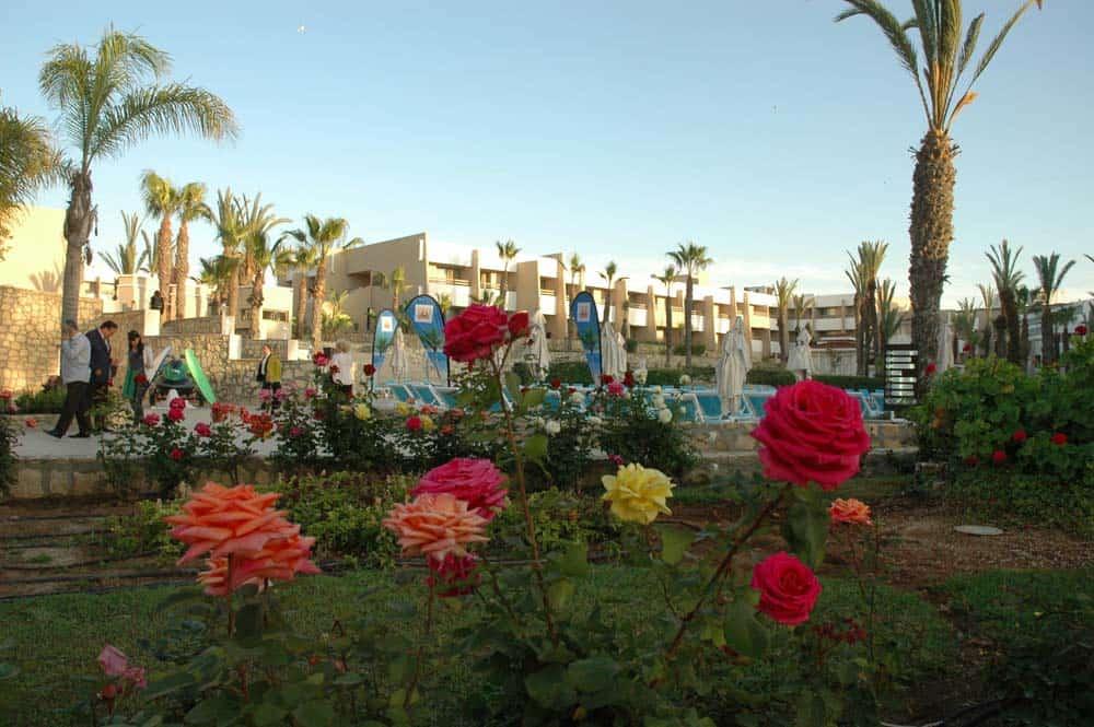 CTOUR vor Ort: Marokko – das Urlaubsland des Jahres 2016: traumhafte Welt der Märchen, des Films und der Wirklichkeit 10