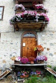 Blumenpracht im Sommer