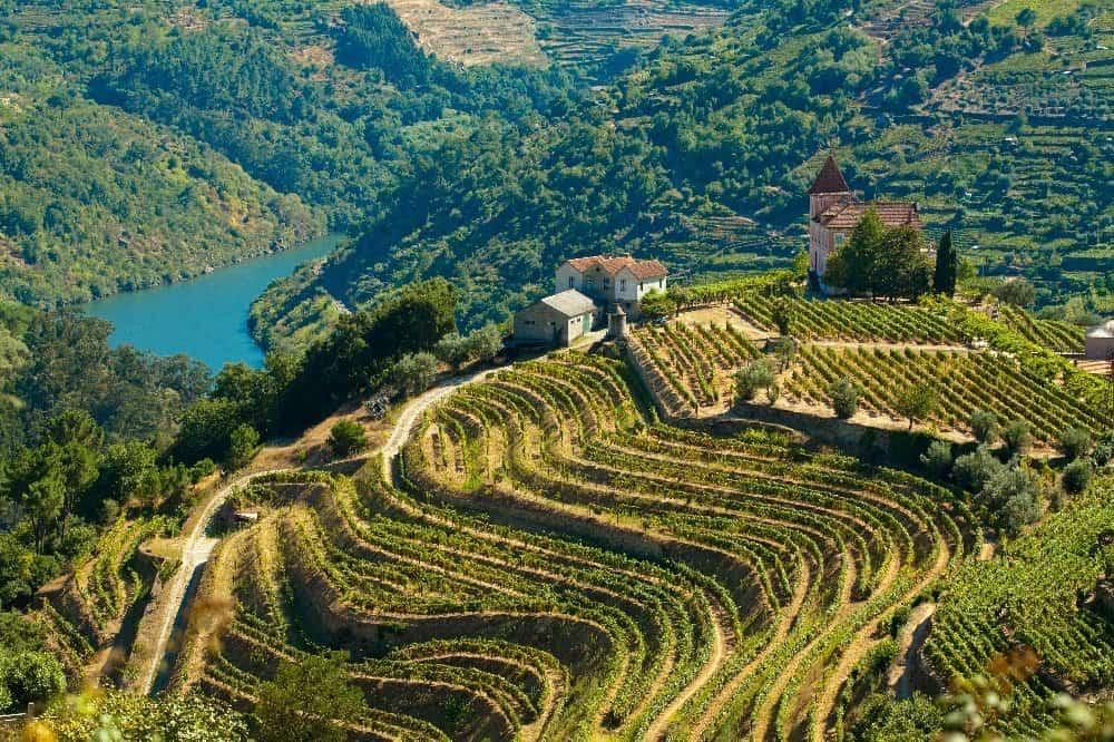 CTOUR on Tour: Goldener Herbst am Douro - eine Portwein-Meditation 22