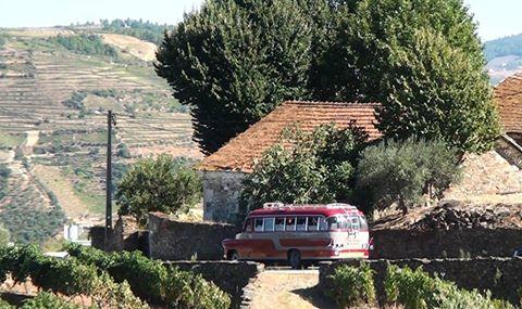 CTOUR on Tour: Goldener Herbst am Douro - eine Portwein-Meditation 25