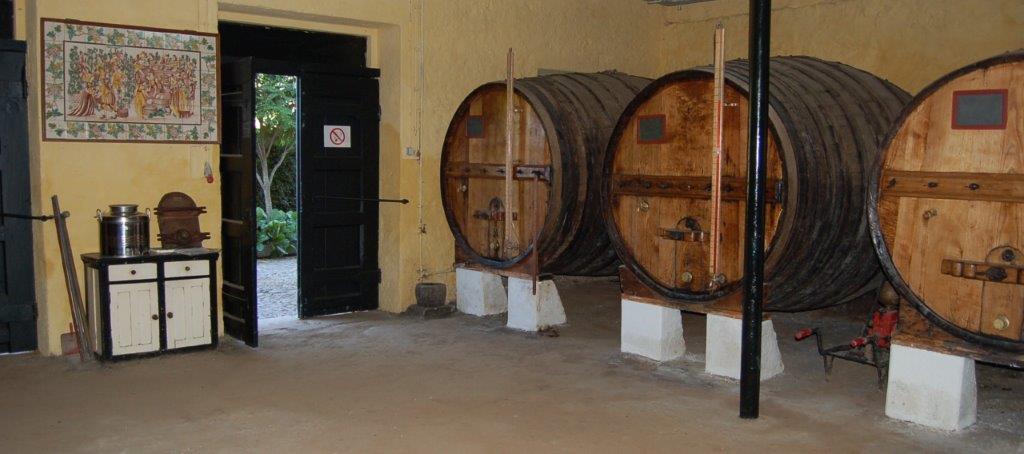 CTOUR on Tour: Goldener Herbst am Douro - eine Portwein-Meditation 31