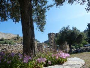 CTOUR on Tour:  Griechenland - Badeurlaub mit eigenem Pool 8