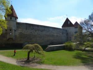 CTOUR on Tour:  Estland - In der Natur der endlosen Stille 13