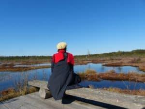 CTOUR on Tour:  Estland - In der Natur der endlosen Stille 7