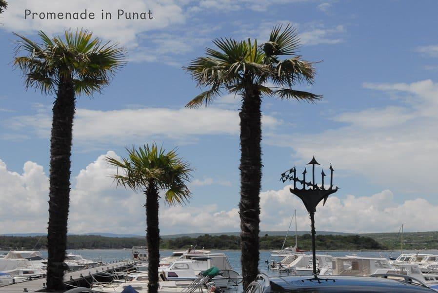 CTOUR on Tour: Krk – die goldene Insel an der Adria 39