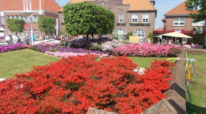 CTOUR vor Ort: Die RHODO 2018 in Westerstede