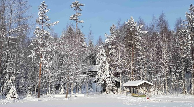 Ctour on tour: Kurs Nord in den eisigen Winterwald