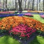 Happy Birthday Keukenhof! Seit 70 Jahren erfreut der schönste Frühlingspark der Welt seine Besucher 25