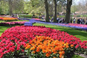 Happy Birthday Keukenhof! Seit 70 Jahren erfreut der schönste Frühlingspark der Welt seine Besucher 31