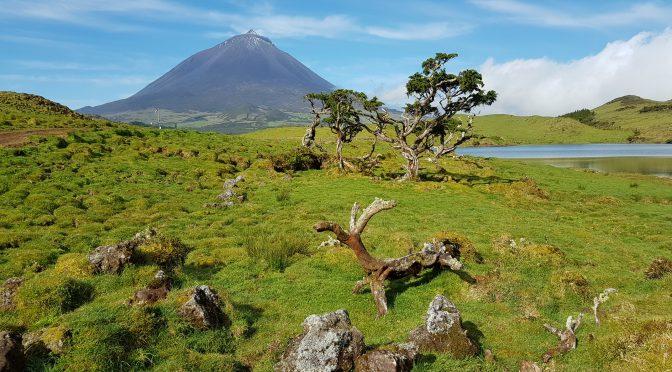 Ctour on Tour: Die Azoren – mehr als nur ein Wetterfaktor