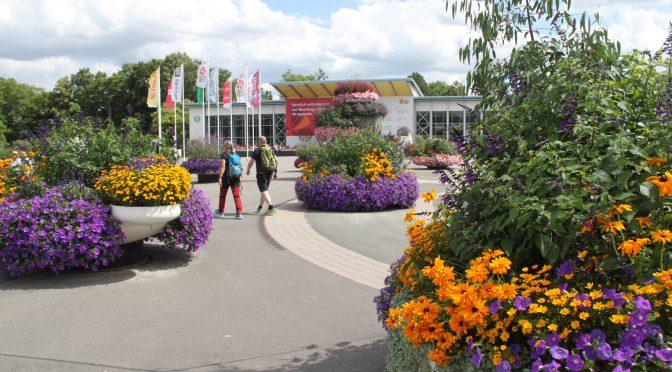 BUGA läßt Erfurt als Blumenstadt und Wiege des Gartenbaus neu erblühen