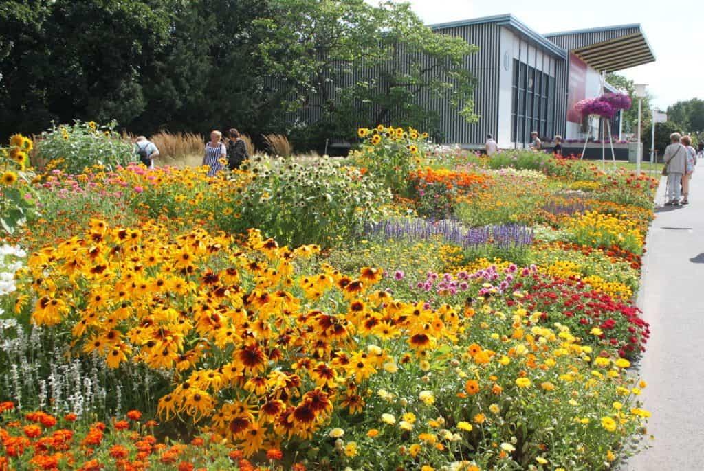 BUGA läßt Erfurt als Blumenstadt und Wiege des Gartenbaus neu erblühen 20
