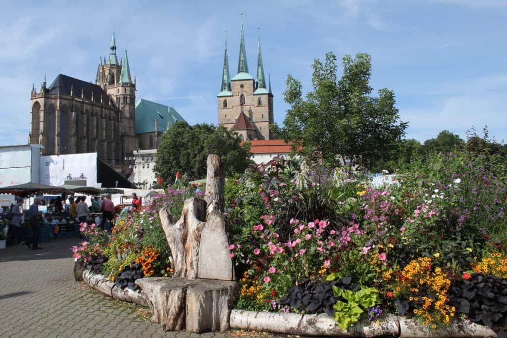 BUGA läßt Erfurt als Blumenstadt und Wiege des Gartenbaus neu erblühen 29